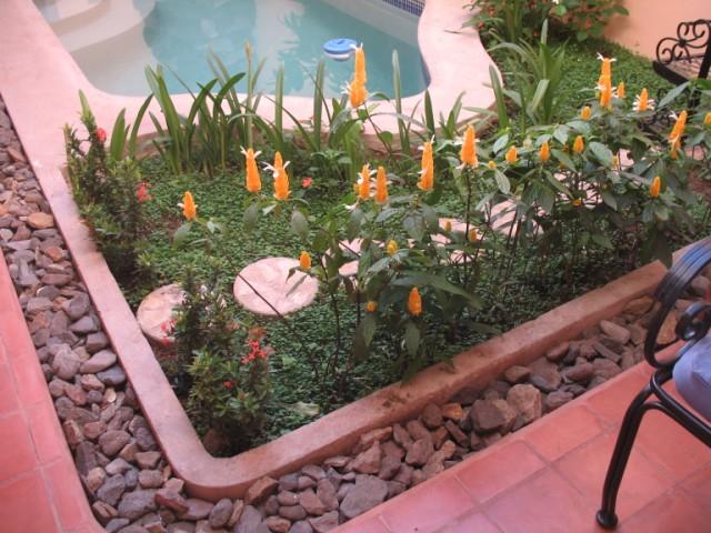 Casa del Mirador - Intimate Pool