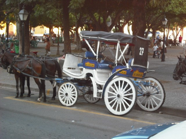Horse drawn tour taxi