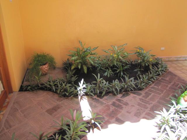 Vista Mombacho Apartments - Large garden area